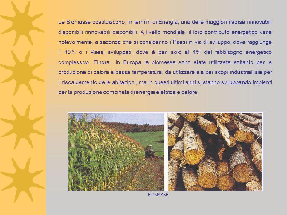 Le Biomasse costituiscono, in termini di Energia, una delle maggiori risorse rinnovabili disponibili rinnovabili disponibili. A livello mondiale, il l