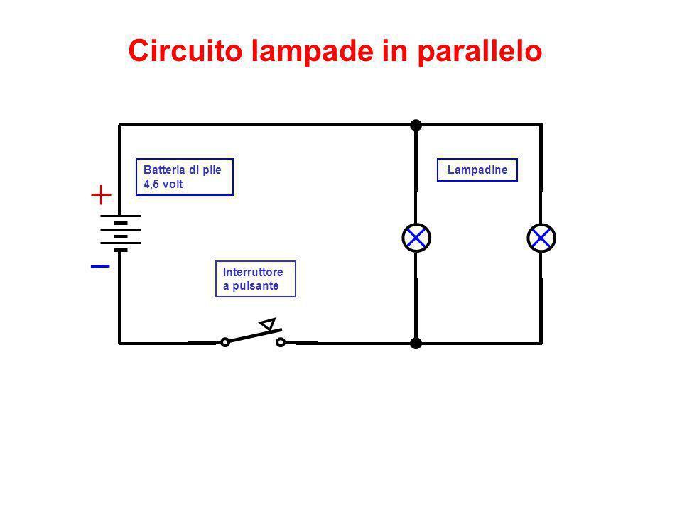 Batteria di pile 4,5 volt Interruttore a pulsante Circuito lampade in parallelo Lampadine
