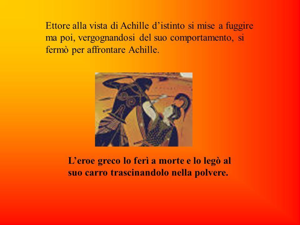 Ettore alla vista di Achille distinto si mise a fuggire ma poi, vergognandosi del suo comportamento, si fermò per affrontare Achille. Leroe greco lo f