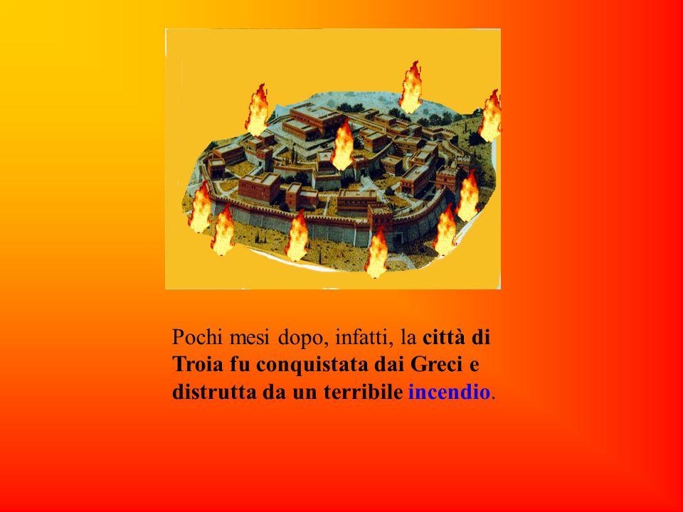 Pochi mesi dopo, infatti, la città di Troia fu conquistata dai Greci e distrutta da un terribile incendio.