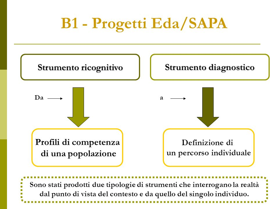 Strumento diagnostico Definizione di un percorso individuale Strumento ricognitivo Profili di competenza di una popolazione B1 - Progetti Eda/SAPA Daa Sono stati prodotti due tipologie di strumenti che interrogano la realtà dal punto di vista del contesto e da quello del singolo individuo.