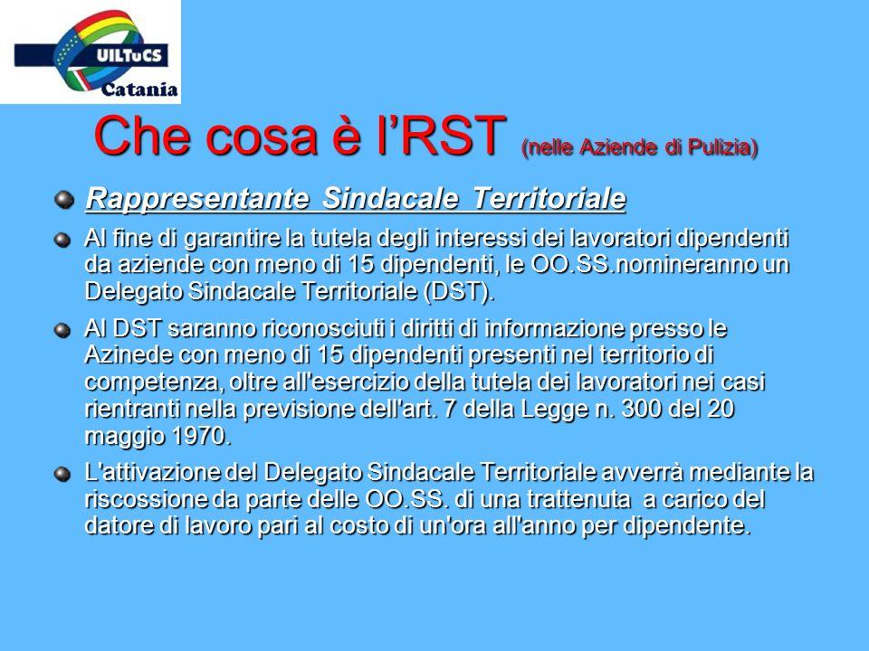 Che cosa è lRST (nelle Aziende di Pulizia) Rappresentante Sindacale Territoriale Al fine di garantire la tutela degli interessi dei lavoratori dipende