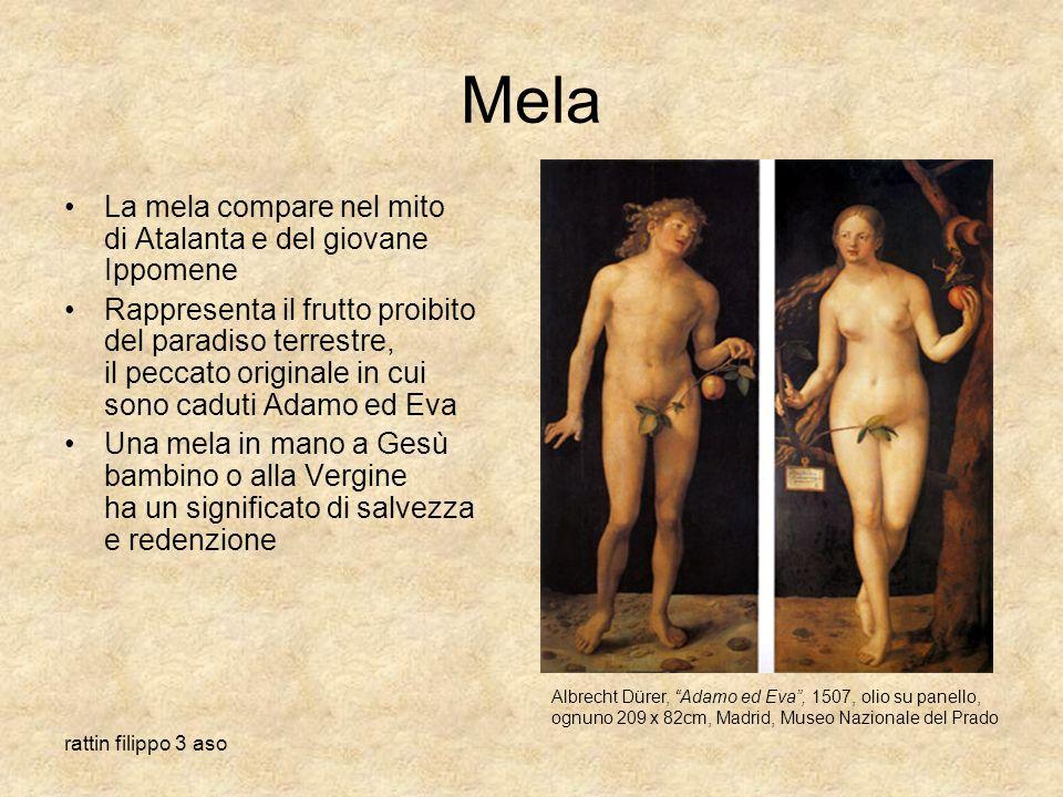 rattin filippo 3 aso Mela La mela compare nel mito di Atalanta e del giovane Ippomene Rappresenta il frutto proibito del paradiso terrestre, il peccat