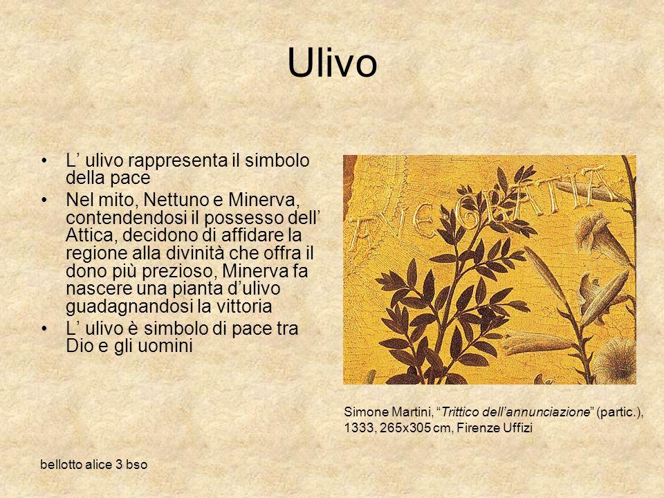bellotto alice 3 bso Ulivo L ulivo rappresenta il simbolo della pace Nel mito, Nettuno e Minerva, contendendosi il possesso dell Attica, decidono di a