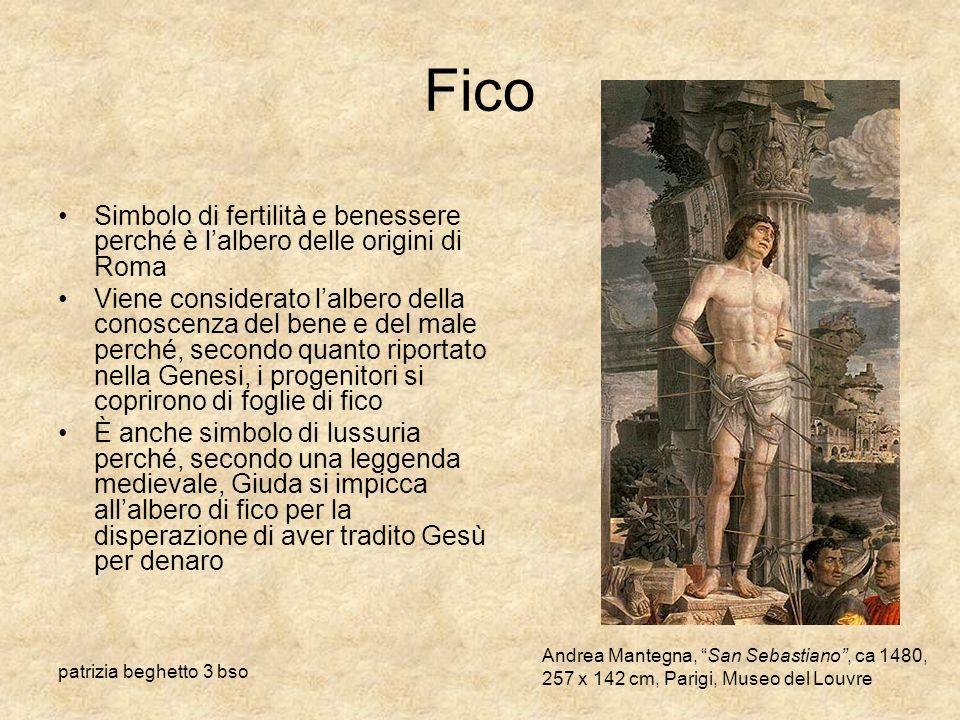 patrizia beghetto 3 bso Fico Simbolo di fertilità e benessere perché è lalbero delle origini di Roma Viene considerato lalbero della conoscenza del be