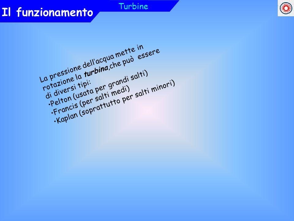 Il funzionamento Turbine La pressione dellacqua mette in rotazione la turbina,che può essere di diversi tipi: Pelton (usata per grandi salti) Francis