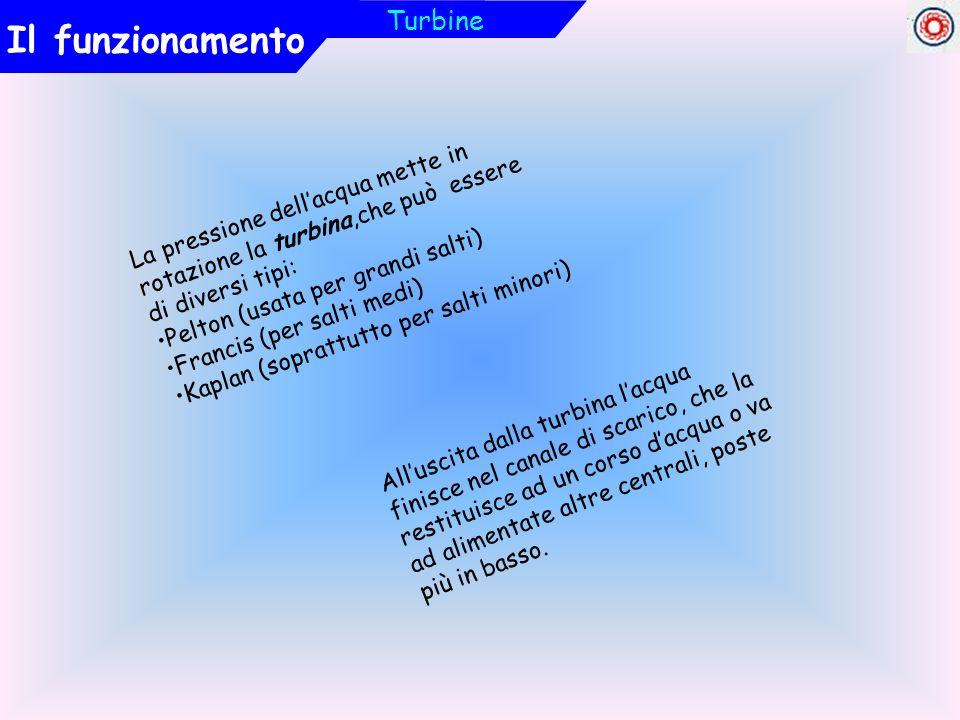 La pressione dellacqua mette in rotazione la turbina,che può essere di diversi tipi: Pelton (usata per grandi salti) Francis (per salti medi) Kaplan (