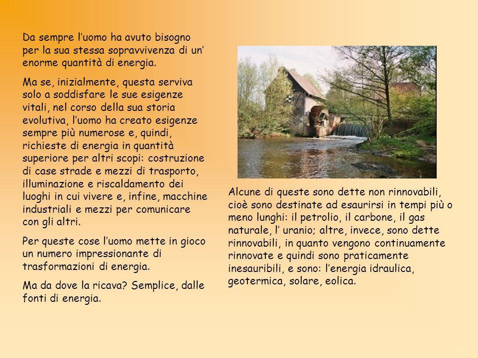 Il funzionamento Turbine La pressione dellacqua mette in rotazione la turbina,che può essere di diversi tipi: Pelton (usata per grandi salti) Francis (per salti medi)