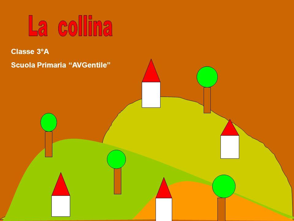 Le colline Le colline sono i rilievi più bassi:arrivano fino a circa 600 metri di altezza;si trovano generalmente vicino alle zone montuose e hanno la caratteristica di avere una forma arrotondata e smussata Il loro clima è più caldo rispetto a quello della montagna.
