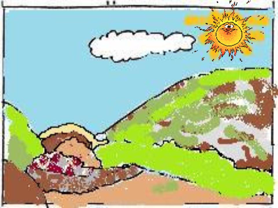 Clicca sullimmagine per vedere il filmato Le colline tettoniche si sono formate per il corrugamento della crosta terrestre e il sollevamento del fondo marino.