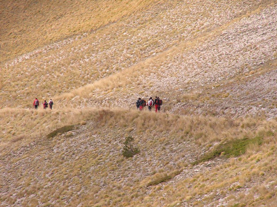 56 La respirazione Soltanto dove il ritmo dei passi sia lento (salita impegnativa od in arrampicata) si potrebbe opportunamente utilizzare una diversa