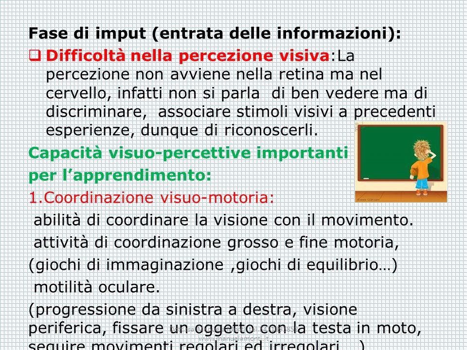 Fase di imput (entrata delle informazioni): Difficoltà nella percezione visiva:La percezione non avviene nella retina ma nel cervello, infatti non si