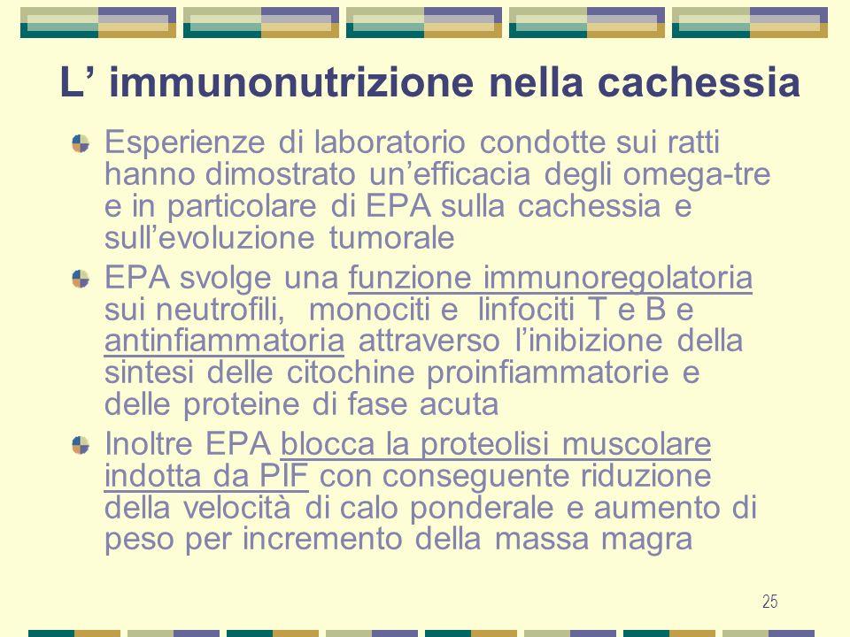 25 L immunonutrizione nella cachessia Esperienze di laboratorio condotte sui ratti hanno dimostrato unefficacia degli omega-tre e in particolare di EPA sulla cachessia e sullevoluzione tumorale EPA svolge una funzione immunoregolatoria sui neutrofili, monociti e linfociti T e B e antinfiammatoria attraverso linibizione della sintesi delle citochine proinfiammatorie e delle proteine di fase acuta Inoltre EPA blocca la proteolisi muscolare indotta da PIF con conseguente riduzione della velocità di calo ponderale e aumento di peso per incremento della massa magra