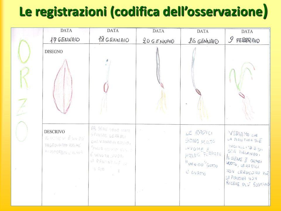Conclusione dellesperienza Le piante per germogliare e crescere hanno bisogno di: - acqua in giusta quantità, - luce, - terra.