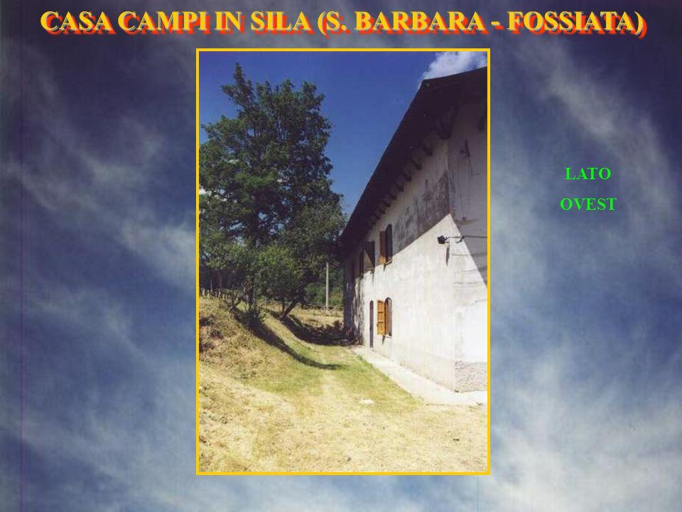 IL PIAZZALE ANTISTANTE LA CASA IN ESTATE IN AUTUNNO CASA CAMPI IN SILA (S. BARBARA- FOSSIATA) CASA CAMPI IN SILA (S. BARBARA - FOSSIATA)