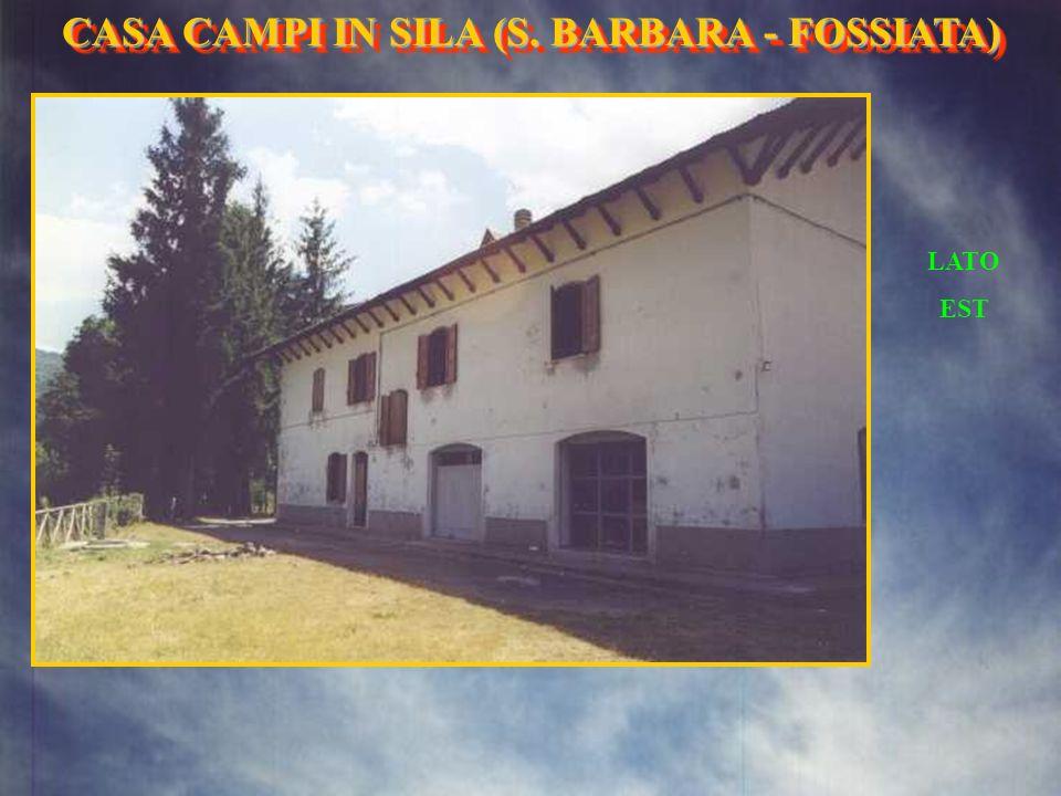 LATO OVEST CASA CAMPI IN SILA (S. BARBARA- FOSSIATA) CASA CAMPI IN SILA (S. BARBARA - FOSSIATA)