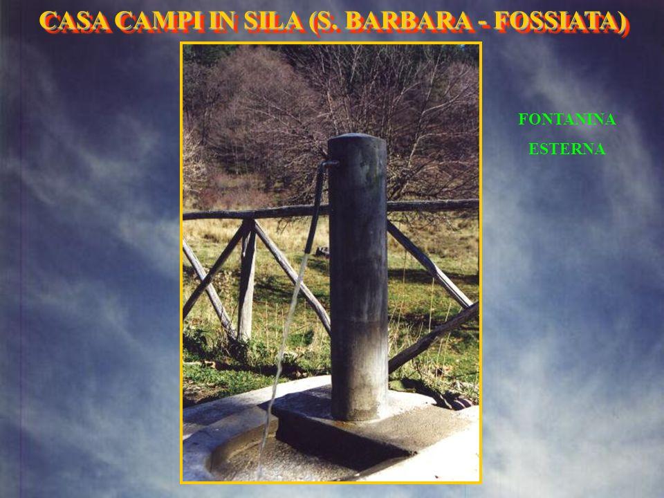 LATO EST CASA CAMPI IN SILA (S. BARBARA- FOSSIATA) CASA CAMPI IN SILA (S. BARBARA - FOSSIATA)