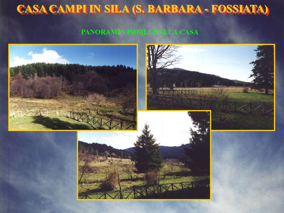 ABETE CASA CAMPI IN SILA (S. BARBARA- FOSSIATA) CASA CAMPI IN SILA (S. BARBARA - FOSSIATA)