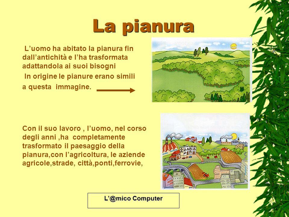 L@mico Computer La pianura Luomo ha abitato la pianura fin dallantichità e lha trasformata adattandola ai suoi bisogni In origine le pianure erano sim