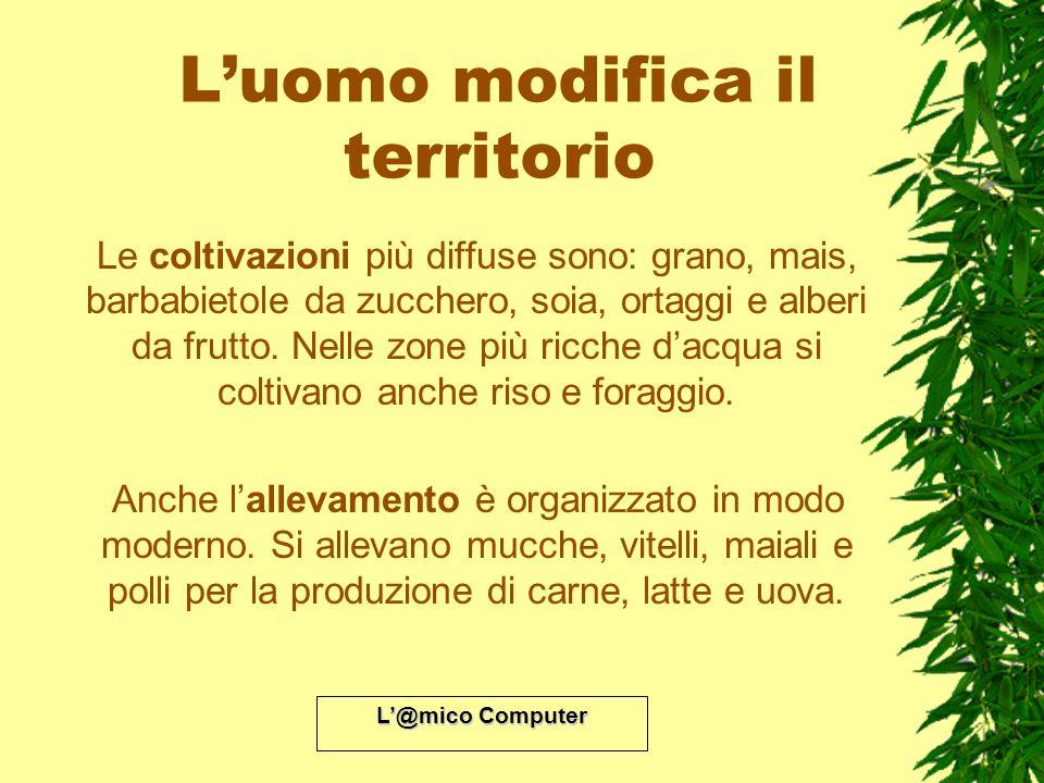 L@mico Computer Luomo modifica il territorio Le coltivazioni più diffuse sono: grano, mais, barbabietole da zucchero, soia, ortaggi e alberi da frutto
