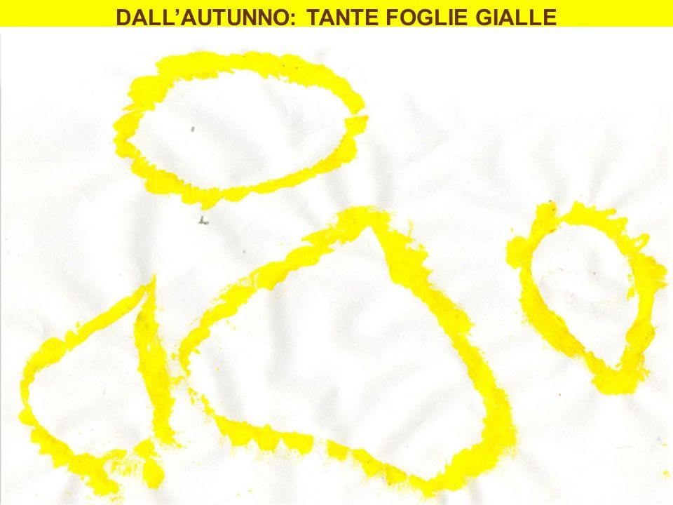 DALLAUTUNNO: TANTE FOGLIE GIALLE