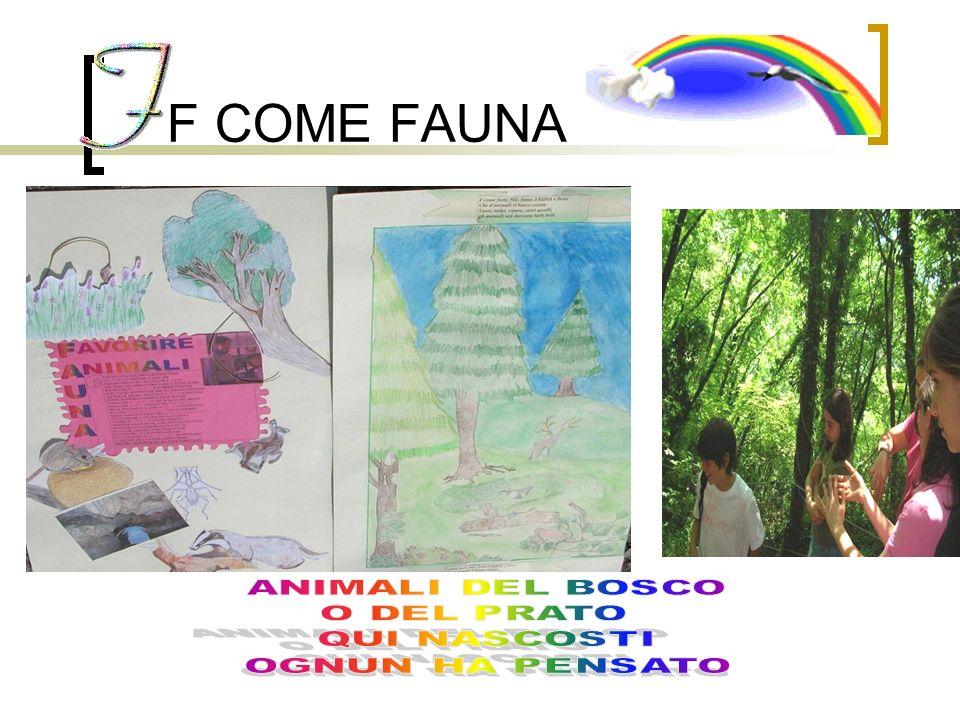 F COME FAUNA