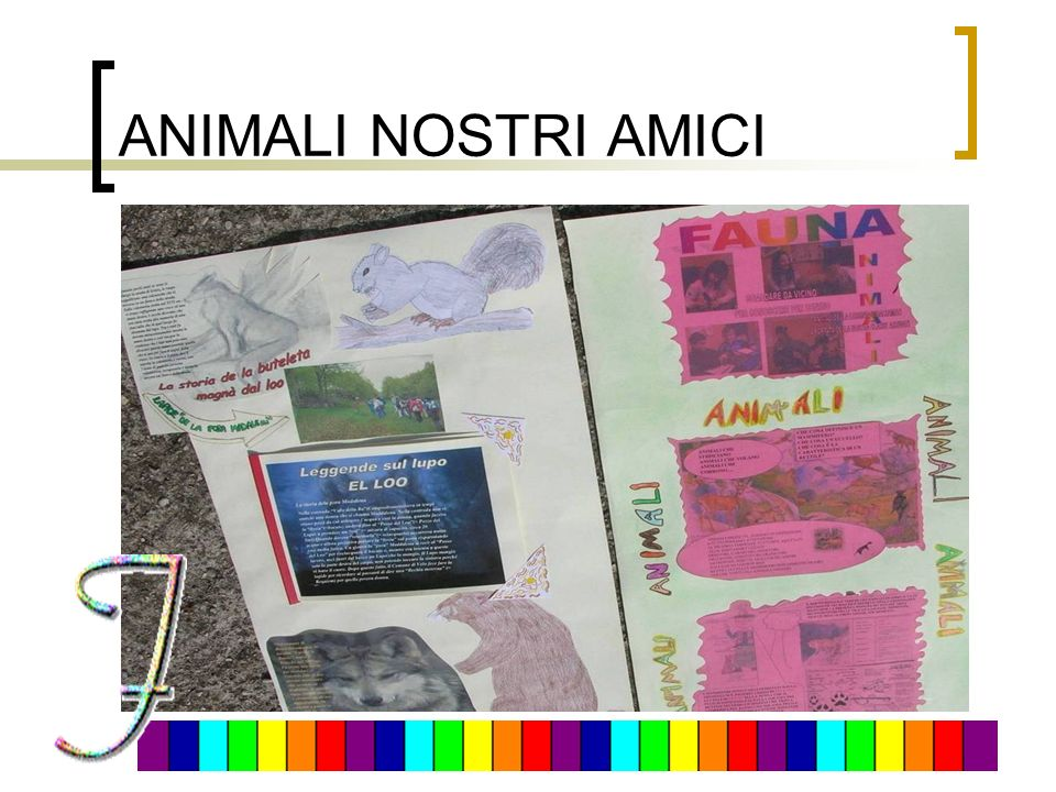 ANIMALI NOSTRI AMICI