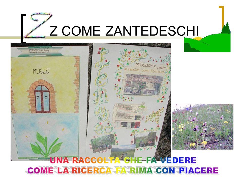 Z COME ZANTEDESCHI