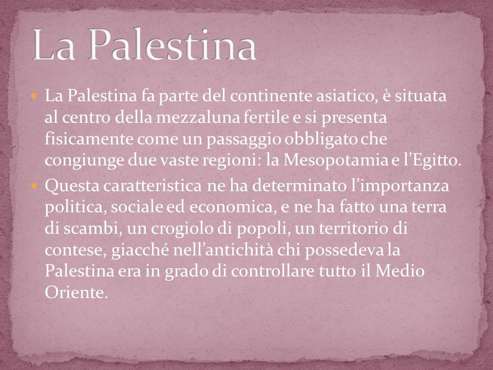 La Palestina fa parte del continente asiatico, è situata al centro della mezzaluna fertile e si presenta fisicamente come un passaggio obbligato che c