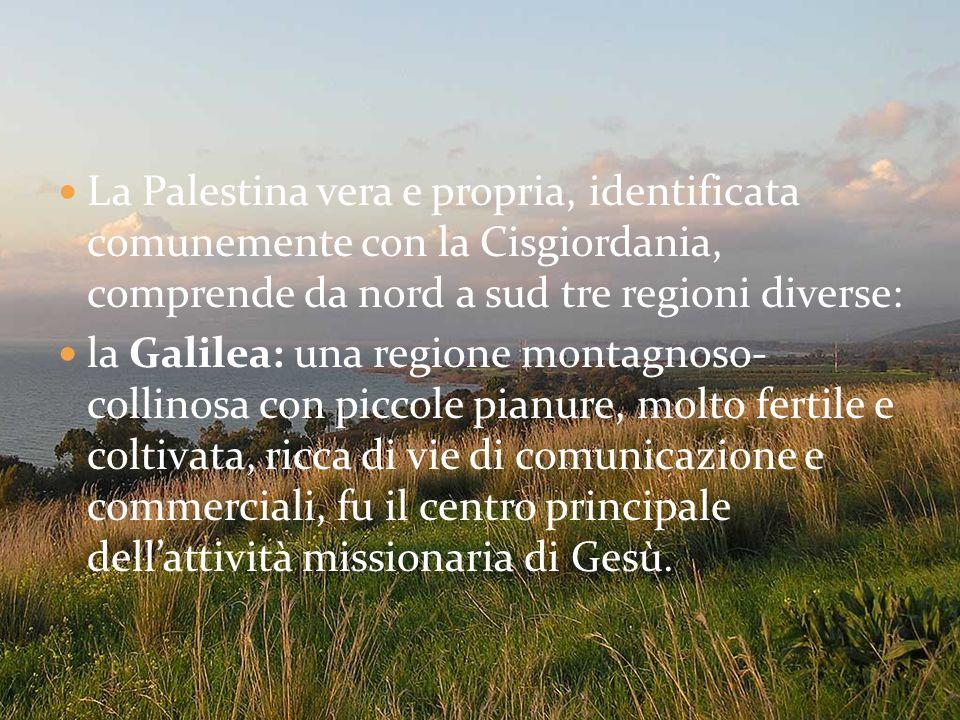 La Palestina vera e propria, identificata comunemente con la Cisgiordania, comprende da nord a sud tre regioni diverse: la Galilea: una regione montag