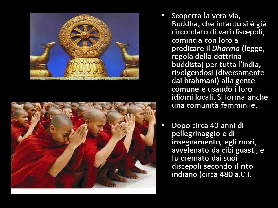 Scoperta la vera via, Buddha, che intanto si è già circondato di vari discepoli, comincia con loro a predicare il Dharma (legge, regola della dottrina