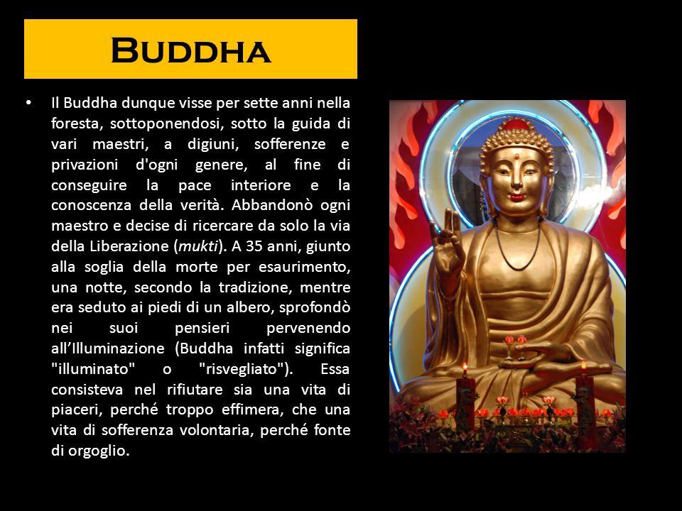 Buddha Il Buddha dunque visse per sette anni nella foresta, sottoponendosi, sotto la guida di vari maestri, a digiuni, sofferenze e privazioni d'ogni