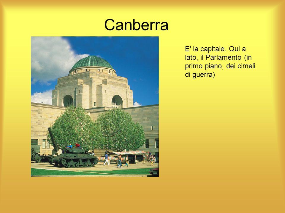 Canberra E la capitale. Qui a lato, il Parlamento (in primo piano, dei cimeli di guerra)