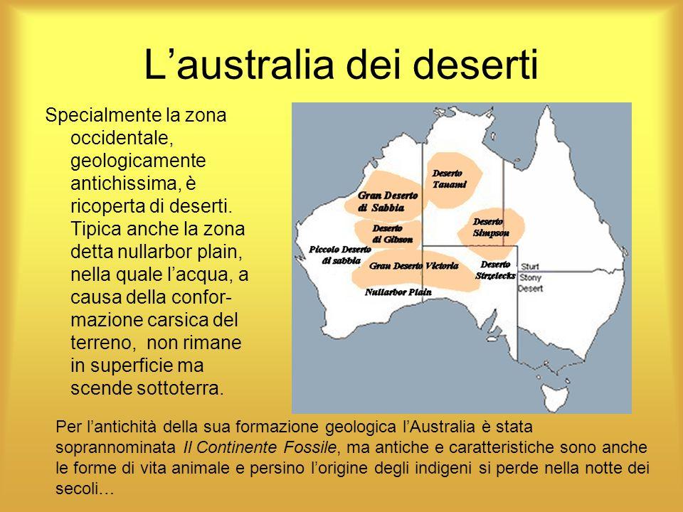 Laustralia dei deserti Specialmente la zona occidentale, geologicamente antichissima, è ricoperta di deserti. Tipica anche la zona detta nullarbor pla