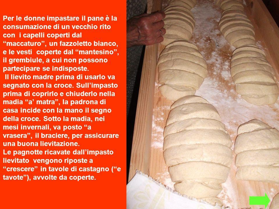 Per le donne impastare il pane è la consumazione di un vecchio rito con i capelli coperti dal maccaturo, un fazzoletto bianco, e le vesti coperte dal