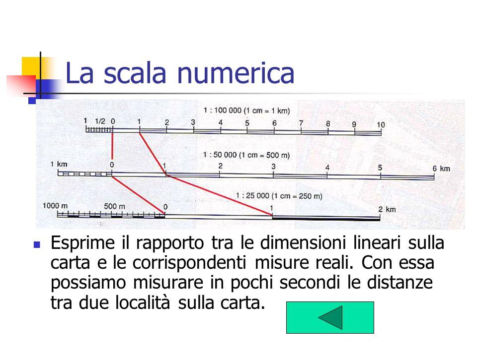 La scala numerica Esprime il rapporto tra le dimensioni lineari sulla carta e le corrispondenti misure reali. Con essa possiamo misurare in pochi seco
