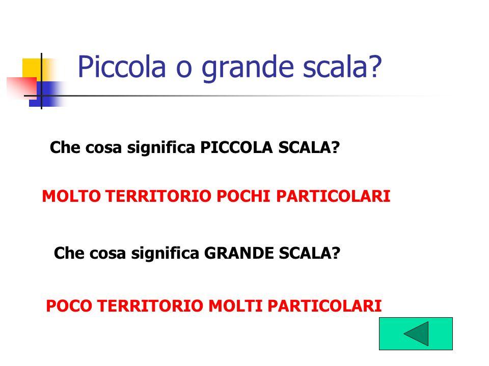 Piccola o grande scala? Che cosa significa PICCOLA SCALA? Che cosa significa GRANDE SCALA? POCO TERRITORIO MOLTI PARTICOLARI MOLTO TERRITORIO POCHI PA