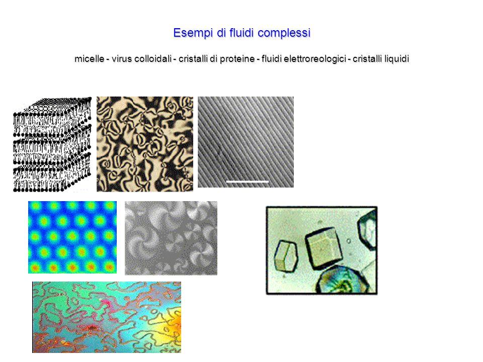 Esempi di fluidi complessi micelle - virus colloidali - cristalli di proteine - fluidi elettroreologici - cristalli liquidi