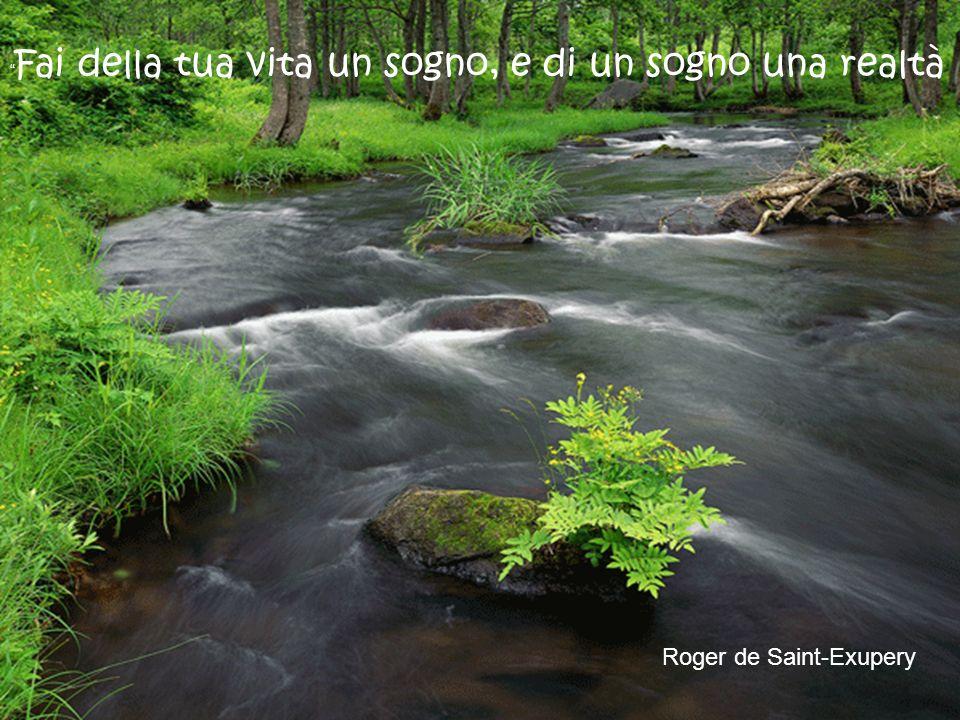 Il sogno, la poesia, l'ottimismo aiutano la realtà più di ogni altro mezzo a disposizione. Sant Agostino