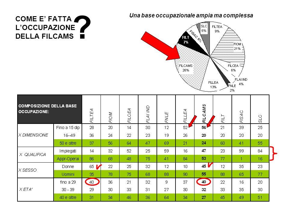 COME E FATTA LOCCUPAZIONE DELLA FILCAMS Una base occupazionale ampia ma complessa