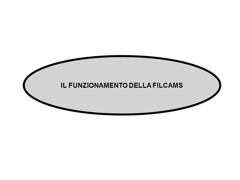 IL FUNZIONAMENTO DELLA FILCAMS