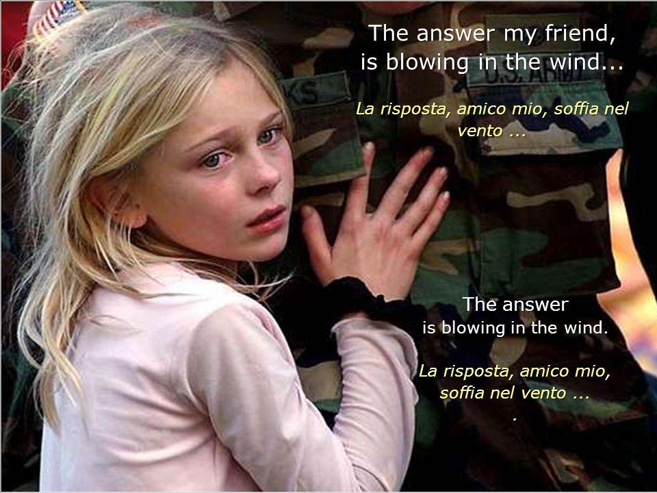 The answer my friend, is blowing in the wind...La risposta, amico mio, soffia nel vento...