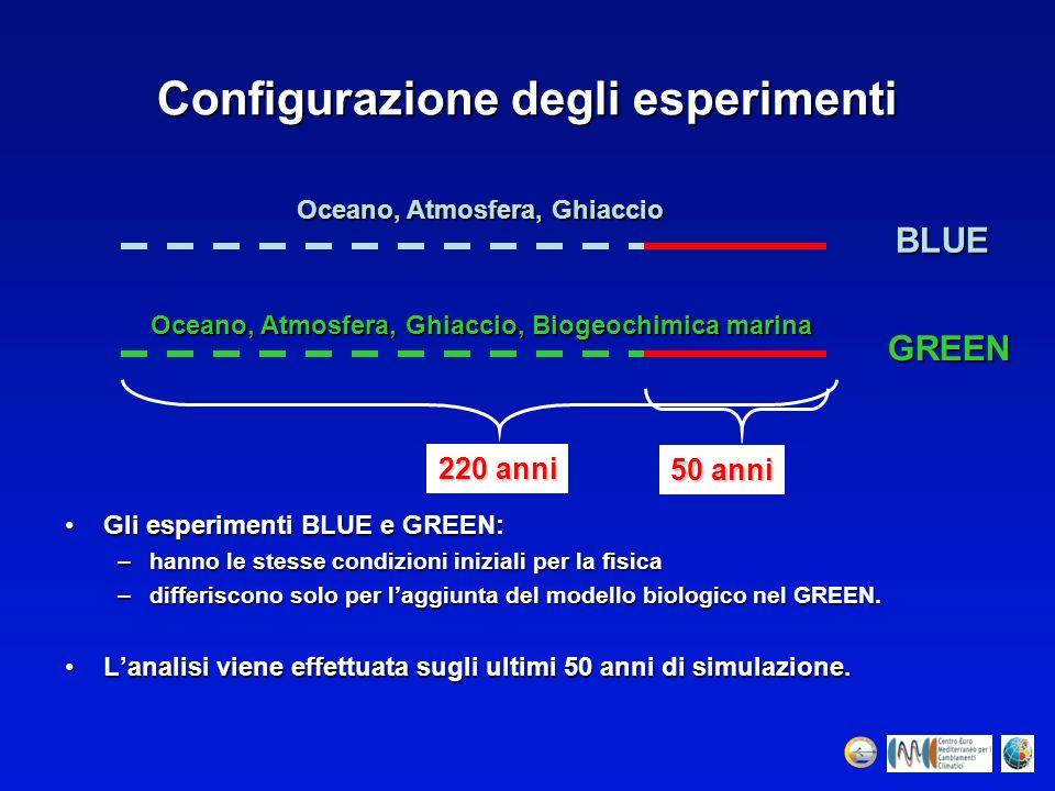 Configurazione degli esperimenti Gli esperimenti BLUE e GREEN:Gli esperimenti BLUE e GREEN: –hanno le stesse condizioni iniziali per la fisica –differ