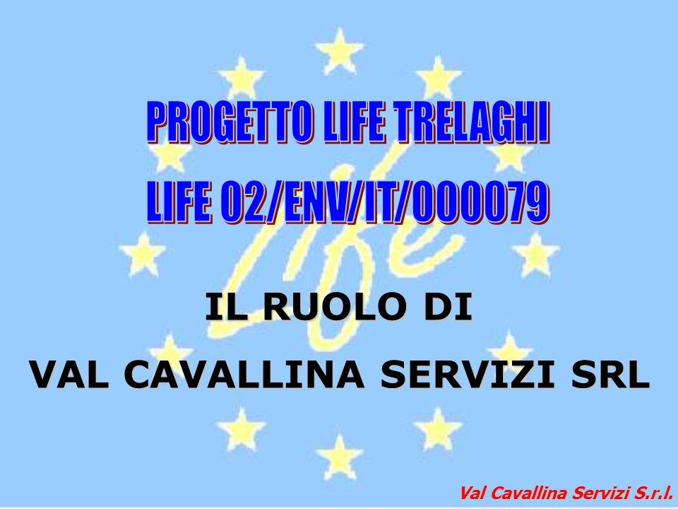 Val Cavallina Servizi S.r.l. IL RUOLO DI VAL CAVALLINA SERVIZI SRL