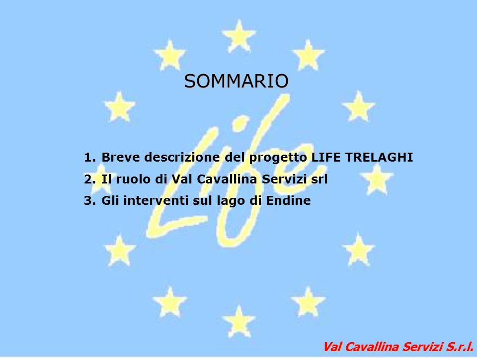 Val Cavallina Servizi S.r.l. 1.Breve descrizione del progetto LIFE TRELAGHI 2.Il ruolo di Val Cavallina Servizi srl 3.Gli interventi sul lago di Endin