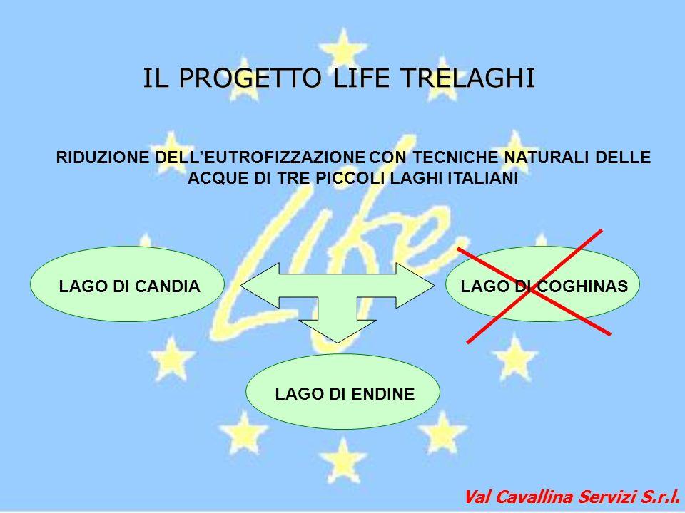 Val Cavallina Servizi S.r.l. IL PROGETTO LIFE TRELAGHI RIDUZIONE DELLEUTROFIZZAZIONE CON TECNICHE NATURALI DELLE ACQUE DI TRE PICCOLI LAGHI ITALIANI L