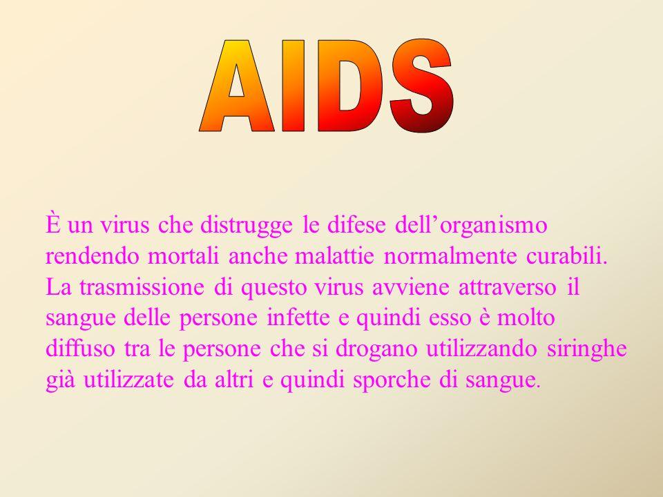 STRETTAMENTE CORRELATO AL PROBLEMA DELLA DROGA E QUELLO DELL AIDS
