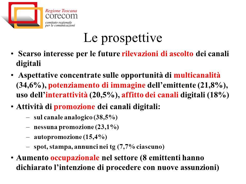 Le prospettive Scarso interesse per le future rilevazioni di ascolto dei canali digitali Aspettative concentrate sulle opportunità di multicanalità (34,6%), potenziamento di immagine dellemittente (21,8%), uso dellinterattività (20,5%), affitto dei canali digitali (18%) Attività di promozione dei canali digitali: – sul canale analogico (38,5%) – nessuna promozione (23,1%) – autopromozione (15,4%) – spot, stampa, annunci nei tg (7,7% ciascuno) Aumento occupazionale nel settore (8 emittenti hanno dichiarato lintenzione di procedere con nuove assunzioni)