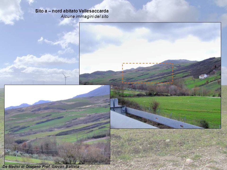 Sito a – nord abitato Vallesaccarda Alcune immagini del sito De Medici di Ottajano Prof. Giovan Battista