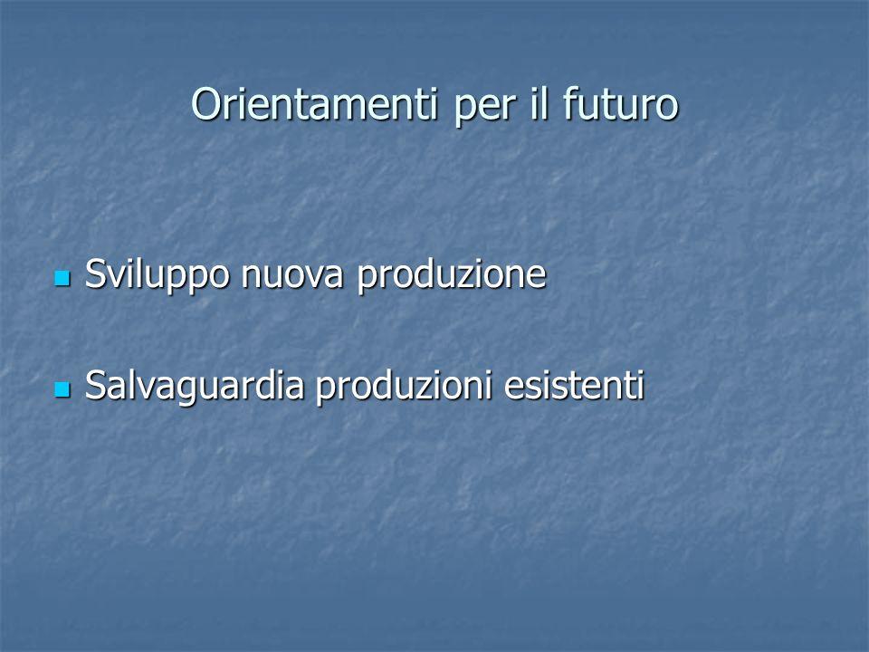 Orientamenti per il futuro Sviluppo nuova produzione Sviluppo nuova produzione Salvaguardia produzioni esistenti Salvaguardia produzioni esistenti